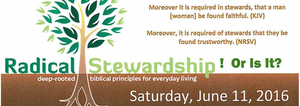 Radical Stewardship Workshop